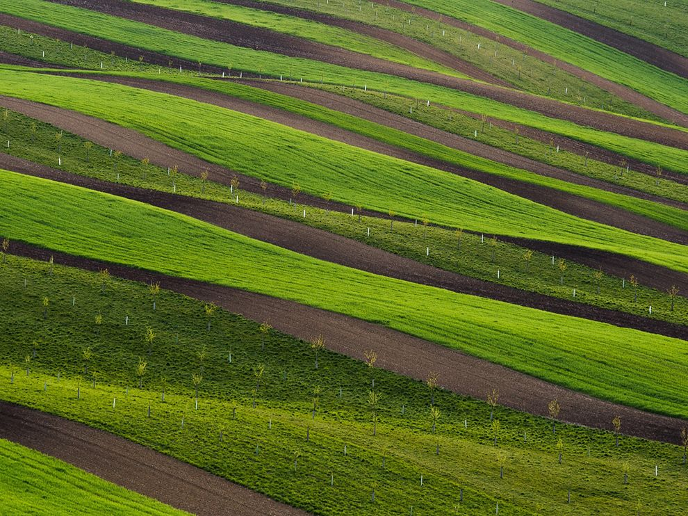 rolling-green-fields-moravia_90427_990x742